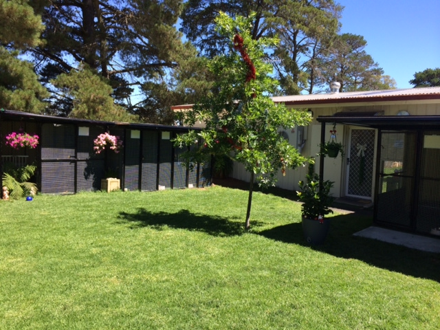 Whispering Pines Dog Kennel